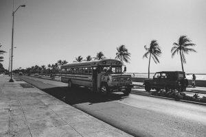 Am liebsten in diesem Bus
